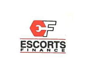escorts|Leo Packers India | Corporate Relocation